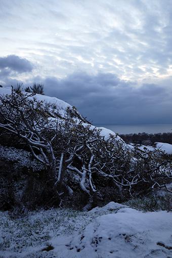 2013first_snow6