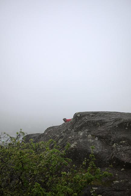first fog 2015