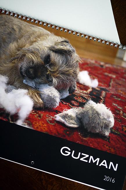 Gusカレンダー