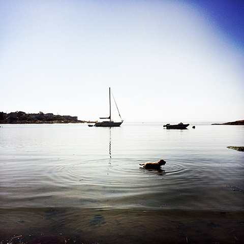 ゴンザレスビーチ