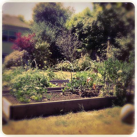 庭仕事の愉しみ