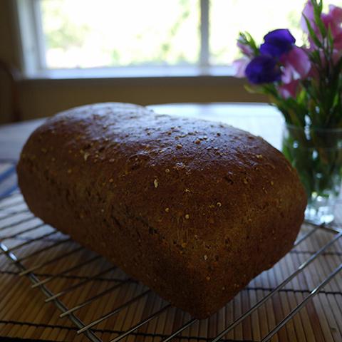 スペルト粉のパン