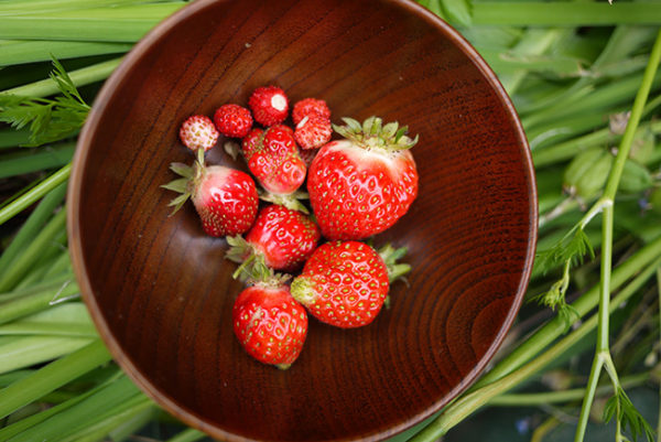 strawberry_season3