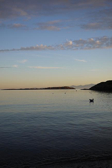 金曜の夕陽と海