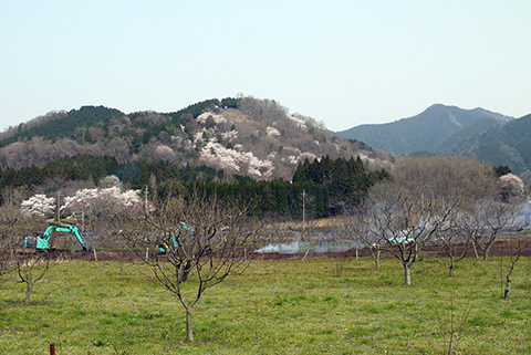 tour_Takeda_castle6