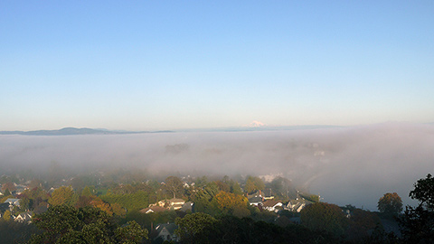 fog in victoria bc