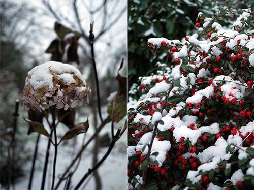 2013first_snow2