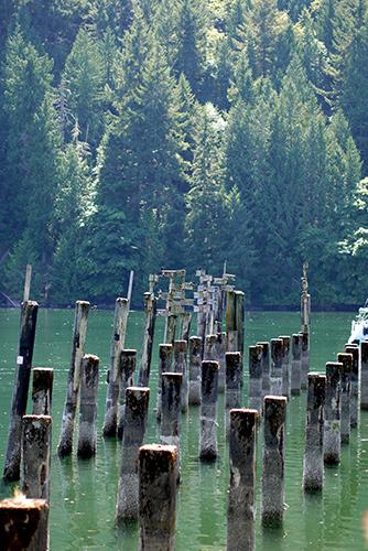 Tod Inlet Walk
