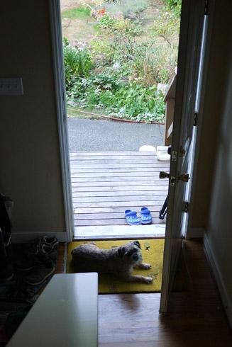 Gus ドアの側で