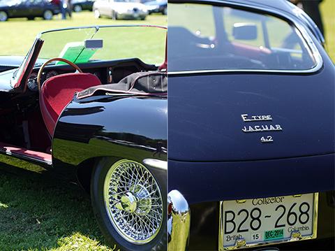 jaguarshow12