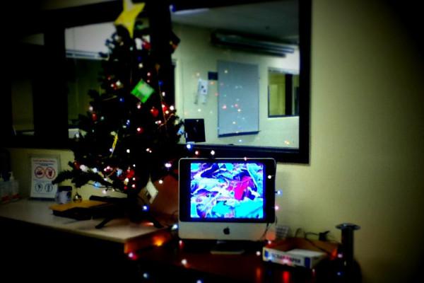 ビクトリア クリスマスライト