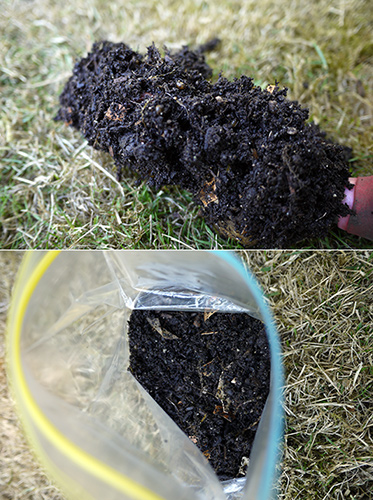 learncompost3