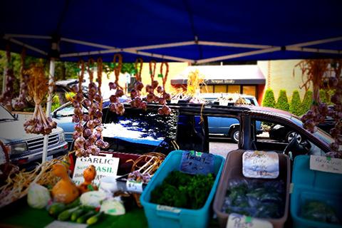 Moss St. Market