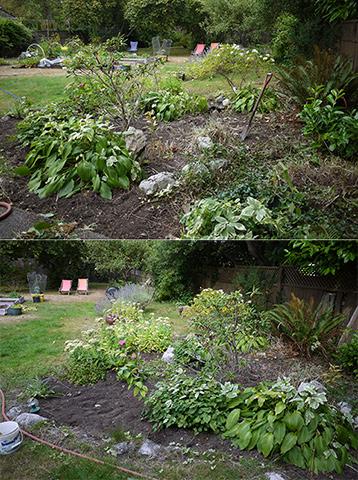 日曜日の庭いじり